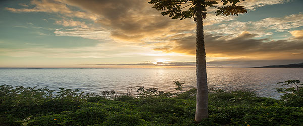 Five South Pacific Vacations