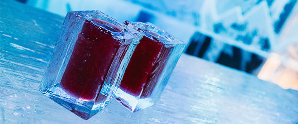 Six Must Visit Ice Bars
