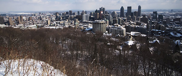 City Spotlight: Montréal