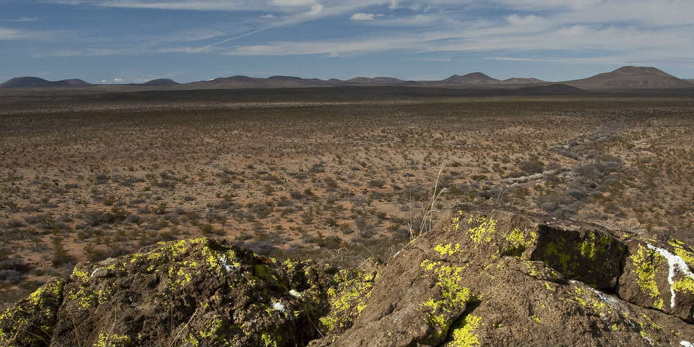 five_fastest_growing_deserts_chihuahuan_desert