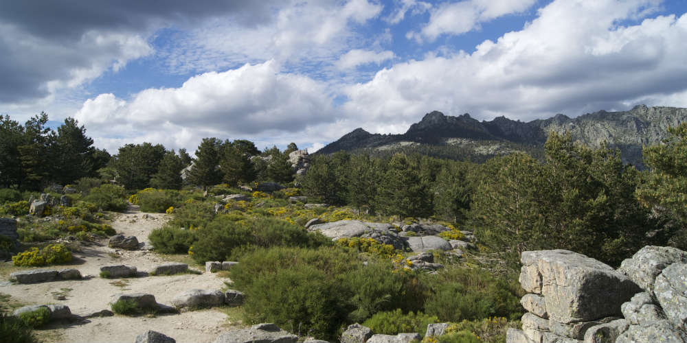 Five Tips for Hiking in a Foreign Country